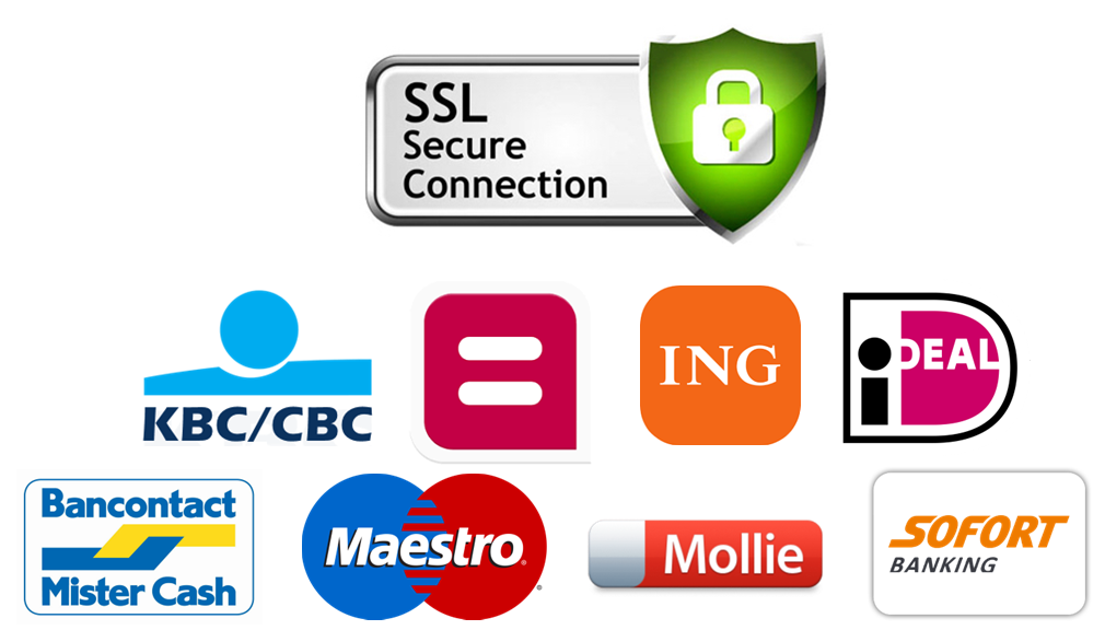 SSL Safe Secure Payments